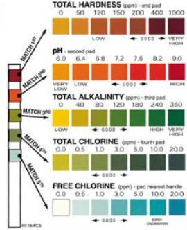 pool water testing,pool chlorine,pool ph,pool alkalinity,swimming pool care,basic pool care,swimming pool maintenance tips,testing pool water,how to test