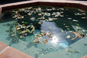 pool chlorine, swimming pool chlorine, how to shock a pool, shocking a pool, swimming pool care, basic pool care, how to take care of a pool