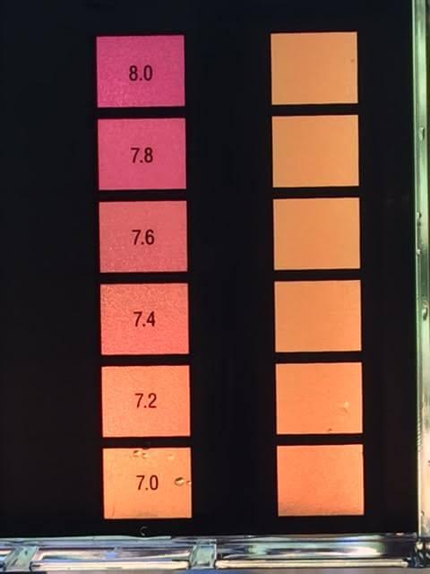 Balancing Swimming Pool pH