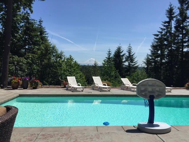 Swimming Pool Chemistry For Dummies : Swimming pool ph adjusting imbalance test increase