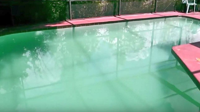How To Get Rid Of Pollen In Your Pool