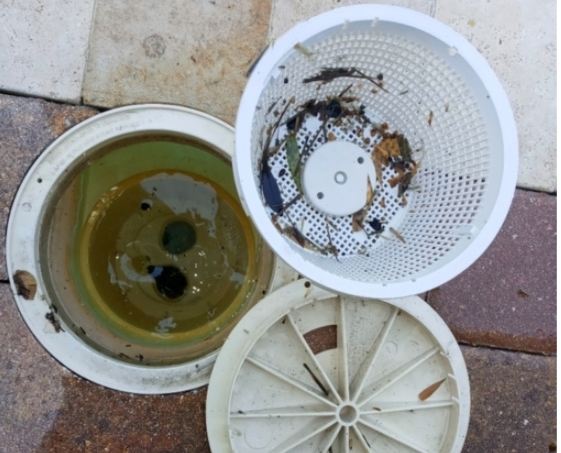 Common Pool Maintenance Mistakes and How To Fix Them