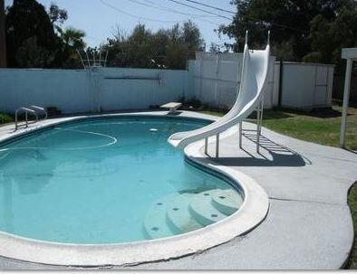 Killing black algae killing algae swimming pool water maintenance for Using algaecide in swimming pool